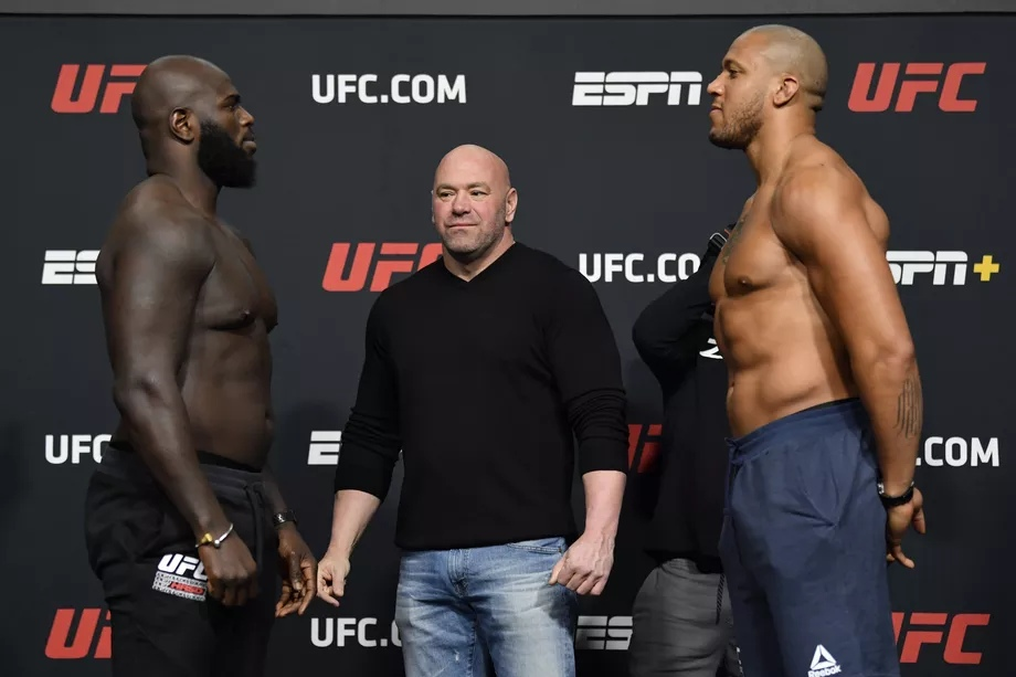 Результаты турнира UFC Fight Night 186: Розенстрайк - Ган