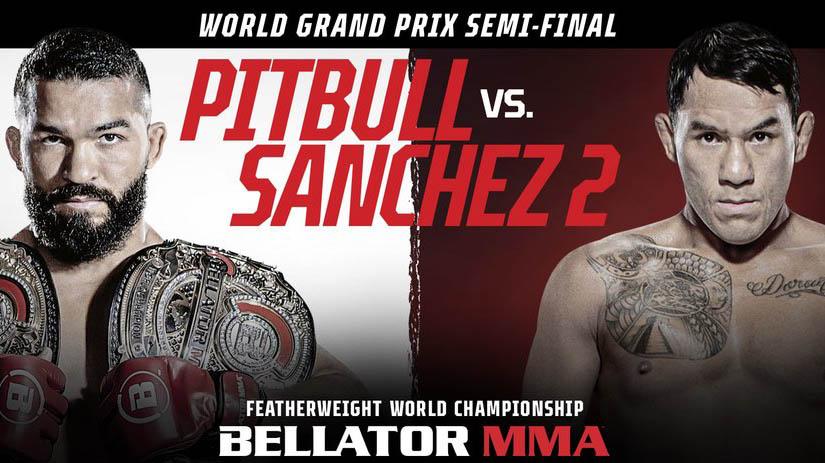 Кард турнира Bellator 255: Питбуль - Санчес 2